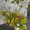生け花とランチ