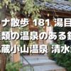 銭湯価格で2つの温泉「武蔵小山温泉 清水湯」【 サウナ散歩 181 湯目 】