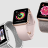 Apple Watchのバンド数種類が販売停止?