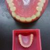 日本大学歯学部附属歯科技工専門学校 (特色その1)