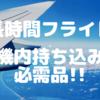 【長時間フライト】機内持ち込み必需品紹介〜国際遠距離恋愛〜