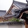 京都・東山 - 妙種院の山茶花と蝋梅