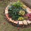 新しく作った花壇のその後