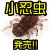 【DUO】スレバスに効く超絶食わせ虫ワーム「レアリス 小忍虫」発売!