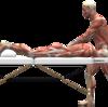 坐骨神経痛・関節の障害からの炎症・・・なの?