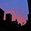 ★薄紅色の雲