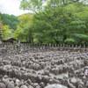 夏の京都へ撮影旅行に行ってきました。(化野念仏寺/祇王寺編)