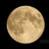 中秋の名月(月齢14.286)