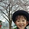 桜の季節を逃す