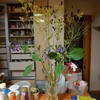 秋の花々…