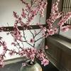 4月の坐禅会の予定