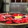 石垣島で食事をするならココ!美味しいお店勝手に厳選4店