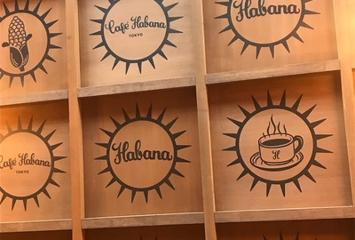 キューバ旅の相棒「ポン子」の紹介〜バックパッカーがそうじゃない人と2人旅するの巻〜【メキシコ・キューバ旅の序章編】