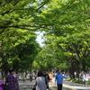 ひさびさ、駒沢公園
