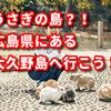 うさぎの島?!広島県にある大久野島へ行こう!