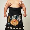 大相撲初場所11日目 琴奨菊-白鵬