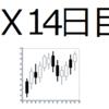 副業 FX 14日目 成績&反省&予想(FX初心者)