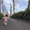 家族の風景 2019秋〜冬