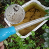 梅の収穫4回目は梅醤油と梅味噌を作ってもらいました。