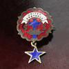 USAヴィンテージピンバッジ赤・星付|UNITED BRETHREN教会日曜学校メンバーブローチ [ACS-18-006]