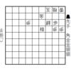 詰将棋を言語分析2