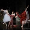 【公演情報】 2017パリ・オペラ座バレエ団日本公演