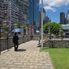 香港島の一日一回の恒例行事といえば…