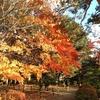 札幌 中島公園&大通り公園