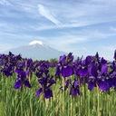魅せる富士山