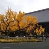 京都ふたたび⑤