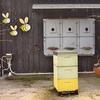 「フカ ハニー ハイブ(Huka Honey Hive)」~いわゆるハチミツファクトリーですが、アイスクリームが絶妙に旨かったので。。。