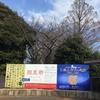 顔真卿(がんしんけい)から 細野晴臣コンサートポスターを思い出した。(東京国立博物館)展覧会-3-