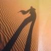 サハラ砂漠で出会った賢い奴隷