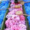 柳谷観音と勝林寺の花手水