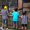 【貧乏サラリーマンのゴールデンウィーク】沖縄の動物園の紹介