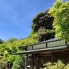 スローライフのススメ‼️鎌倉長谷寺『青く澄んだ空と新緑を楽しむ』こんな時間がずーっと続くといいですね。