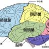 【目標達成】まだまだ不思議な脳!アファメーションの簡単理屈!RASって知ってます?