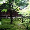 日本で昔の自分を探す旅