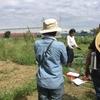 【オルかな農園⑮~秋野菜の植え付けを開始しました~】