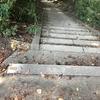 階段探しマラニック。。