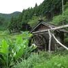 上勝町樫原の棚田を見てきました。行くなら軽四