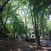 新宿御苑以外にもよい公園はたくさんあるんだよ!!!!
