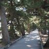 お正月旅行:日本三大松原のひとつ「三保の松原」へ