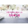 【公園情報】西船場公園(最寄り肥後橋):大阪市西区公園まとめ