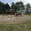 仕事の合間に息子と公園