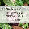 【Oisix(オイシックス)】おためしセットのケールサラダのKitがおいしくてリピート購入