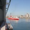 【アメリカ・マイアミ港】カリブ海クルーズの拠点、クルーズ船がぞくぞく出港
