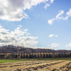 紅葉の〆どころと冬支度を始める遠別町大成・正修の山々。