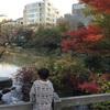 【檜町公園】日本庭園もある!!