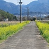 日本の農業の未来は?-グループ営農の新たな形への挑戦
